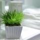Baños con jardín, ¿qué tener en cuenta?